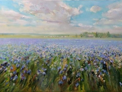 Cornflower field 2012 Painting